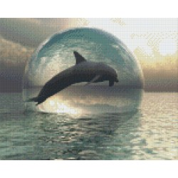 Dolphin in a Bubble