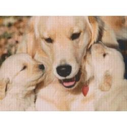 Labrador with Pups