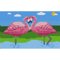 Two Flamingo`s