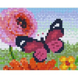 Pink Butterfly and Flowers