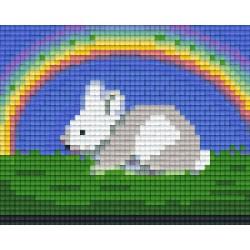Bunny Under Rainbow