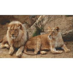 Angola Lions